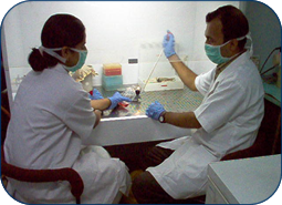 VIROLOGY LABORATORY